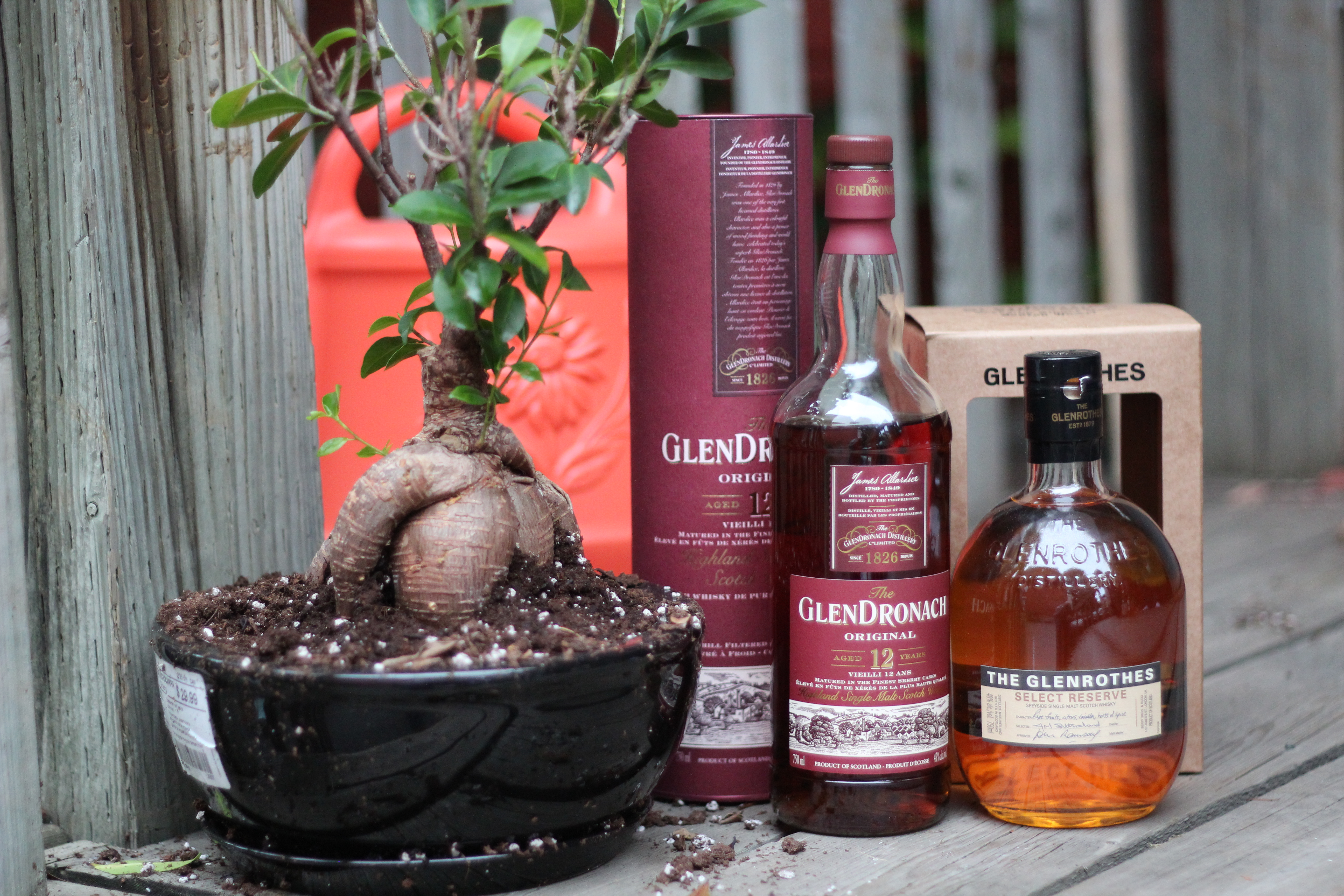 ScotchParty Review #3 – BattleScotch! The Glendronach 12y Original v The Glenrothes Select Reserve with Jared, Ashley, Alex, Goran, Ryan, Dan & Bowick